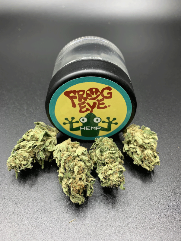 t1 hemp strain